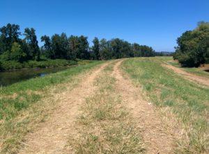 Stretch of Columbia River Dike - Sean's Run for ARROAutism 2016